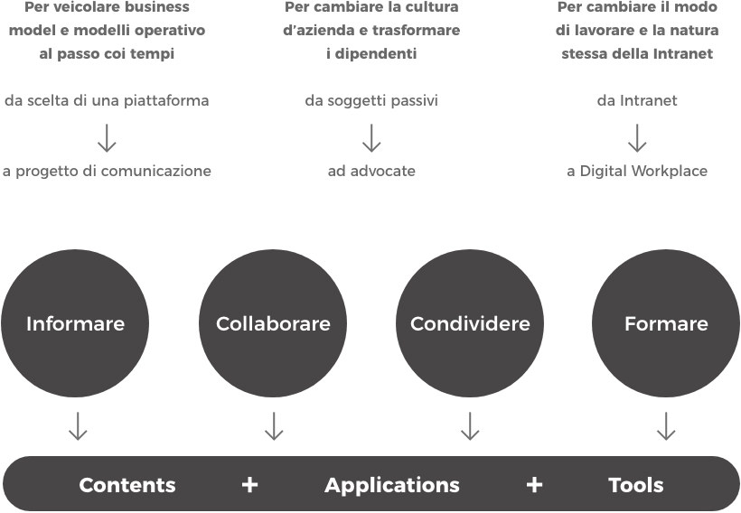 Focus intranet Adacto
